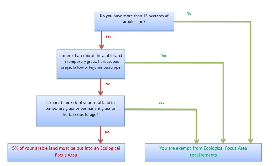 Flowchart identifying if EFA requirements apply to you