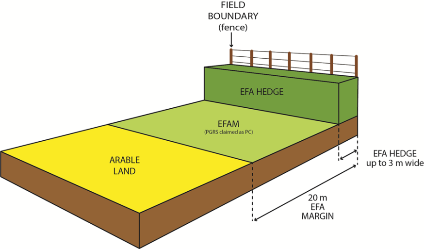 EFA location diagram one