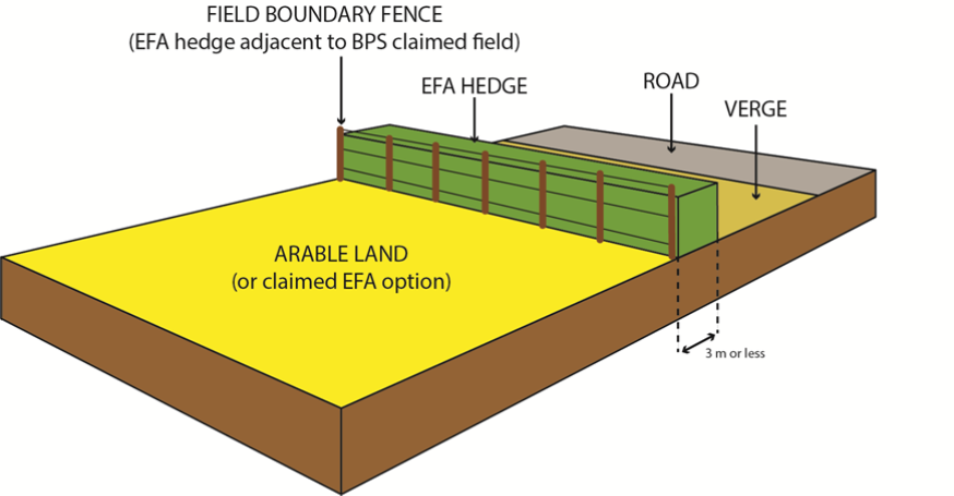 EFA hedge diagram example 1